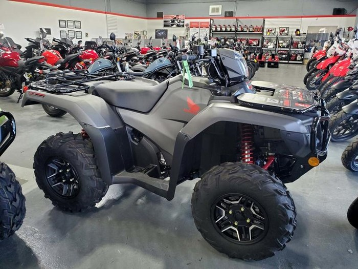 2019 Honda TRX500 Rubicon DCT DELUXE Photo 3 of 7