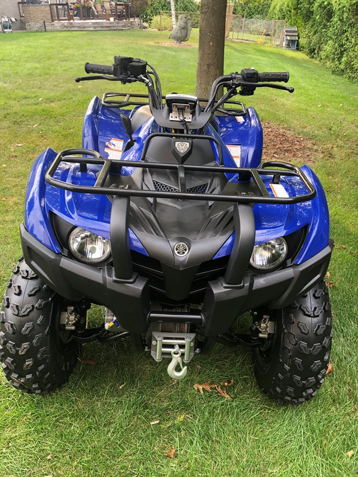 2013 Yamaha Grizzly 300 Photo 3 of 6