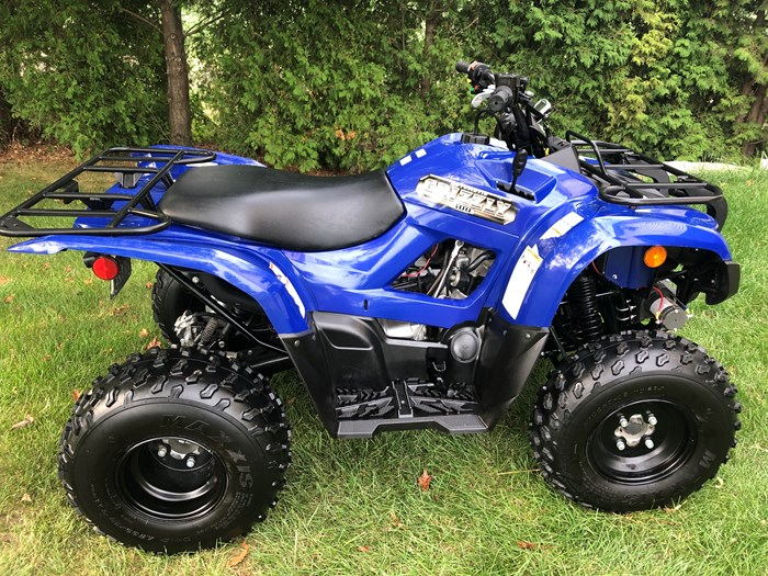 2013 Yamaha Grizzly 300 Photo 1 of 6