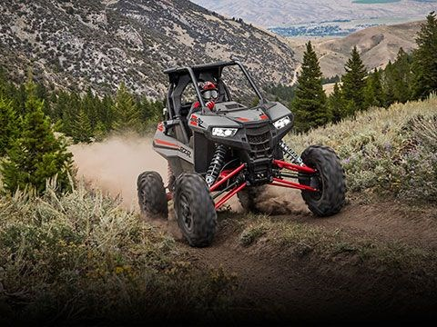 2020 Polaris RZR RS1 Cruiser Black Photo 4 of 8