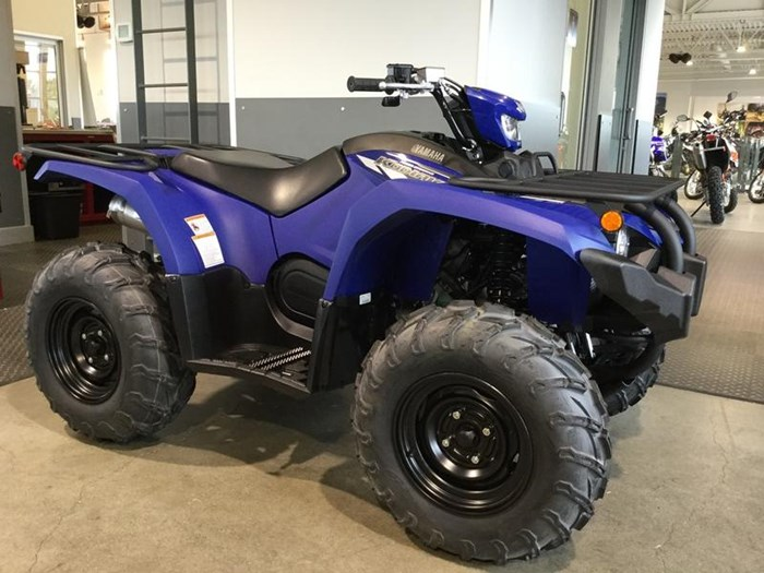 2020 Yamaha Kodiak 450 EPS Photo 1 of 6