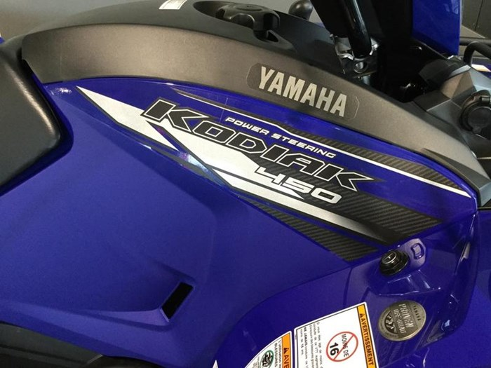2020 Yamaha Kodiak 450 EPS Photo 3 of 6