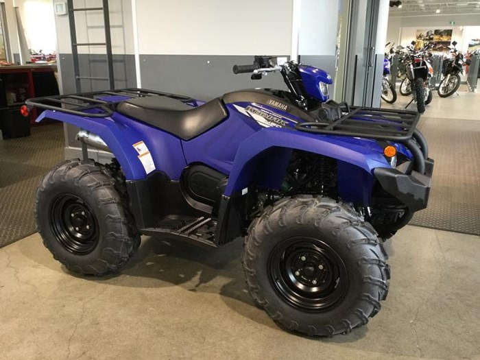 2020 Yamaha Kodiak 450 EPS Photo 6 of 6