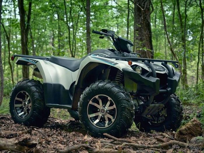 2020 Yamaha Kodiak 450 EPS SE Photo 1 of 9