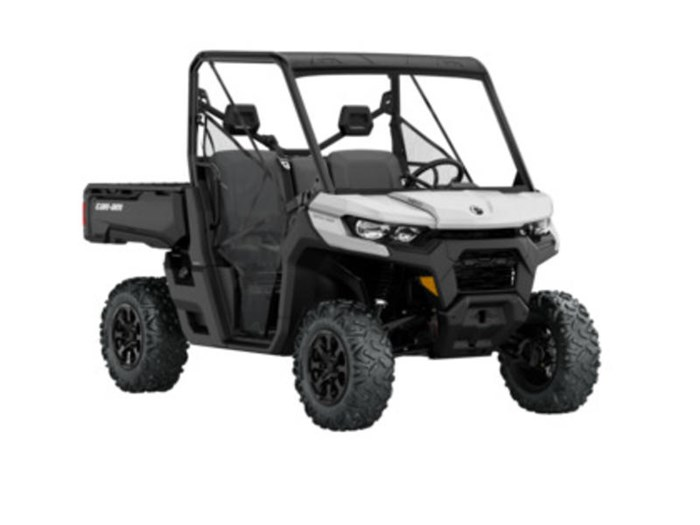 2020 Can-Am Defender DPS HD10 Photo 1 of 4