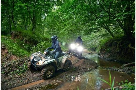 2020 Yamaha Kodiak 450 EPS - YF45KPLG Photo 3 of 12