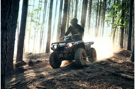 2020 Yamaha Kodiak 450 EPS - YF45KPLG Photo 5 of 12