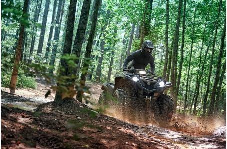 2020 Yamaha Grizzly EPS SE - YF70GPSLC Photo 13 of 15