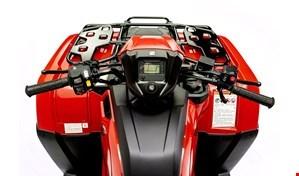 2020 Honda FOREMAN 520 Close Range Camo Photo 5 of 5