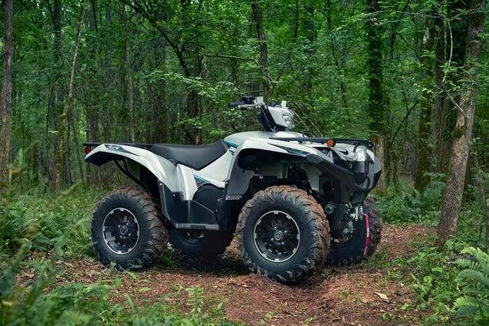 2020 Yamaha Grizzly EPS LE Photo 5 of 7
