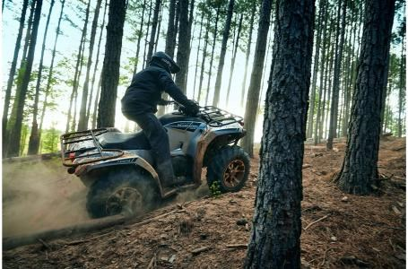 2020 Yamaha Kodiak 450 EPS Photo 10 sur 16