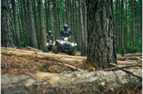 2020 Yamaha Grizzly 700 EPS  LE Photo 6 of 7
