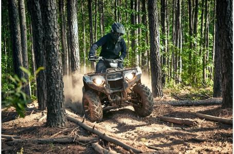2020 Yamaha Kodiak 450 EPS - YF45KPLL Photo 10 of 12