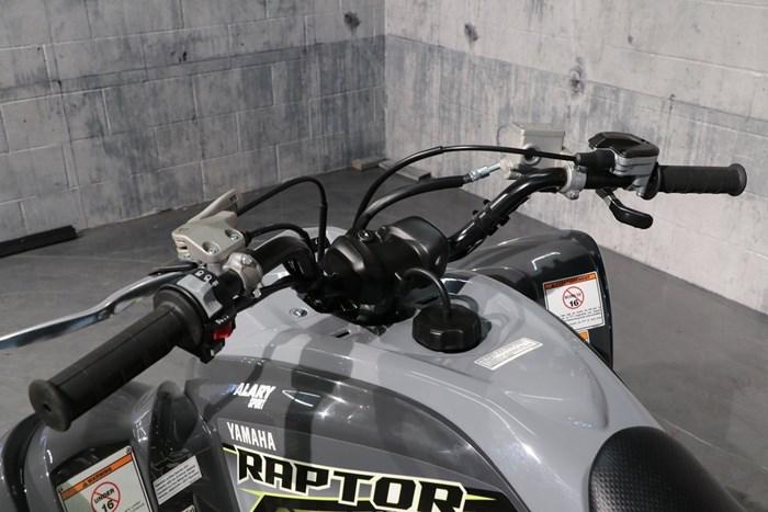 2019 Yamaha Raptor 700R Photo 6 of 11