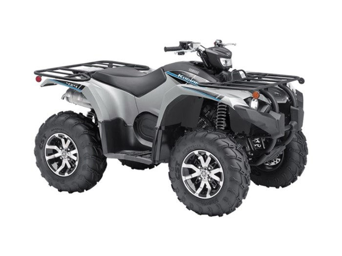 2020 Yamaha Kodiak 450 EPS SE Photo 1 of 1