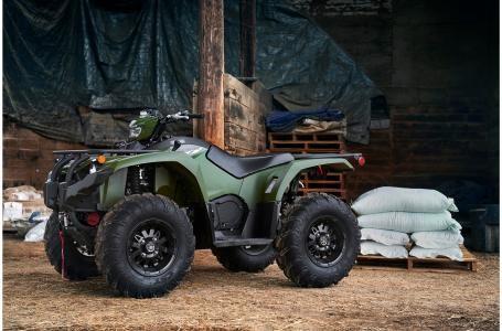 2020 Yamaha Kodiak 450 EPS SE - YF45KPSLG Photo 12 of 14