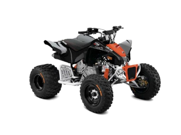 2021 Can-Am DS 90 X Photo 1 of 2